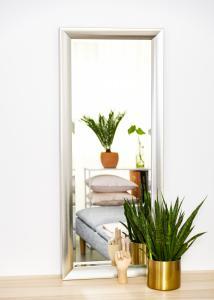 Spegel Hotagen Silver 50x130 cm