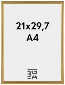 Ram Decoline Guld 21x29,7 cm (A4)