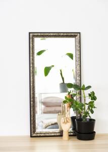 Spegel Ottsjö Gråbrun 40x80 cm