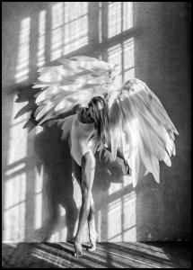 Angel Women Posing II Poster