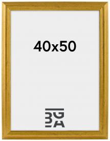 Västkusten Guld 40x50 cm