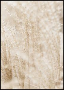 Bright Grass Poster