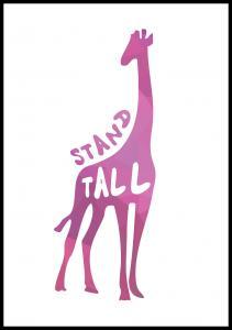 Giraffe stand tall - Rosa Poster