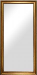 Spegel Rokoko Guld 50x100 cm