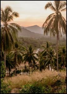Palm Trees On Mountain Poster