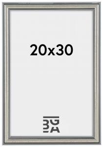 Ram Frigg Silver 20x30 cm