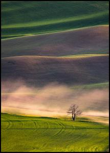 Sunset in Palouse Poster