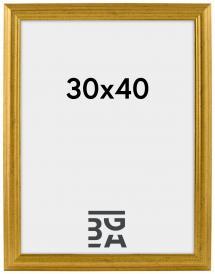 Västkusten Guld 30x40 cm