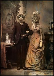 Cat Couple Poster