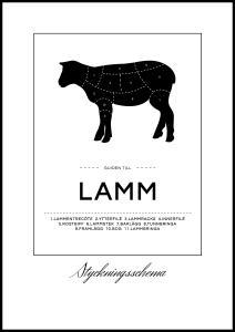 Styckningsschema lamm Poster