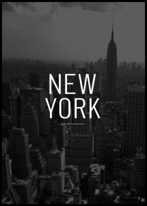 New York View Poster