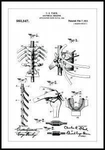Patentritning - Anatomiskt Skelett III Poster