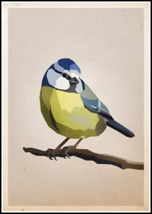Blue tit Poster