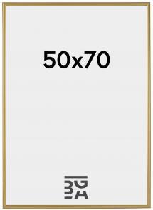 Ram Decoline Guld 50x70 cm