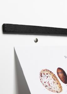 Wall Sticks Magnets Black Oak 42 cm
