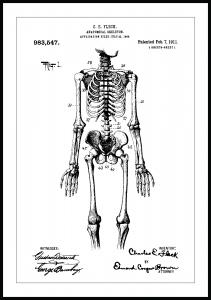 Patentritning - Anatomiskt Skelett I Poster