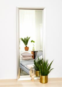 Spegel Hotagen Silver 60x150 cm