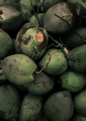 Bildverkstad Coconuts